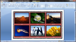 How to insert images into word document table